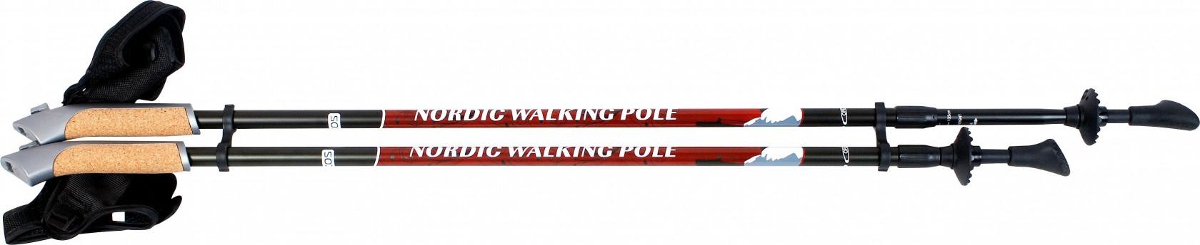Палки для ходьбы